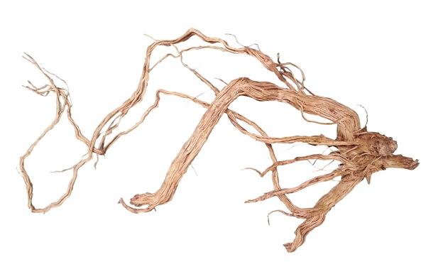 Afbeelding azalea hout