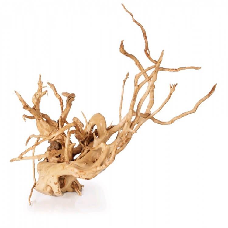 Afbeelding spiderwood
